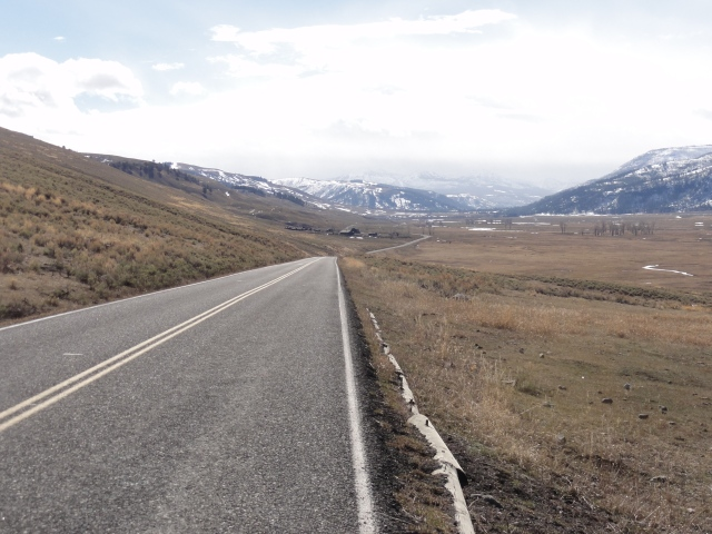 Lamar Valley in March