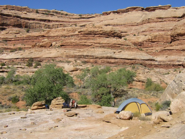 Or here, still in Grand Gulch but below the Narrows...