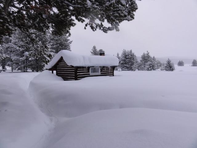 Hogan cabin 1